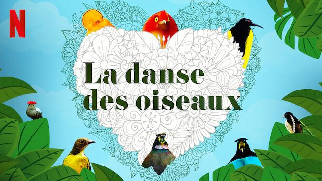 La danse des oiseaux